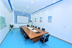 Silicon valley conference room